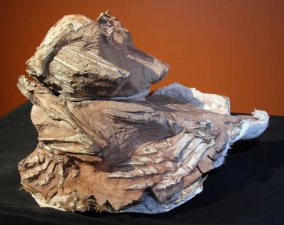 Navajo Dino
